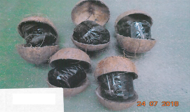 Smuggler who hid 138kg of cannabis in coconuts jailed